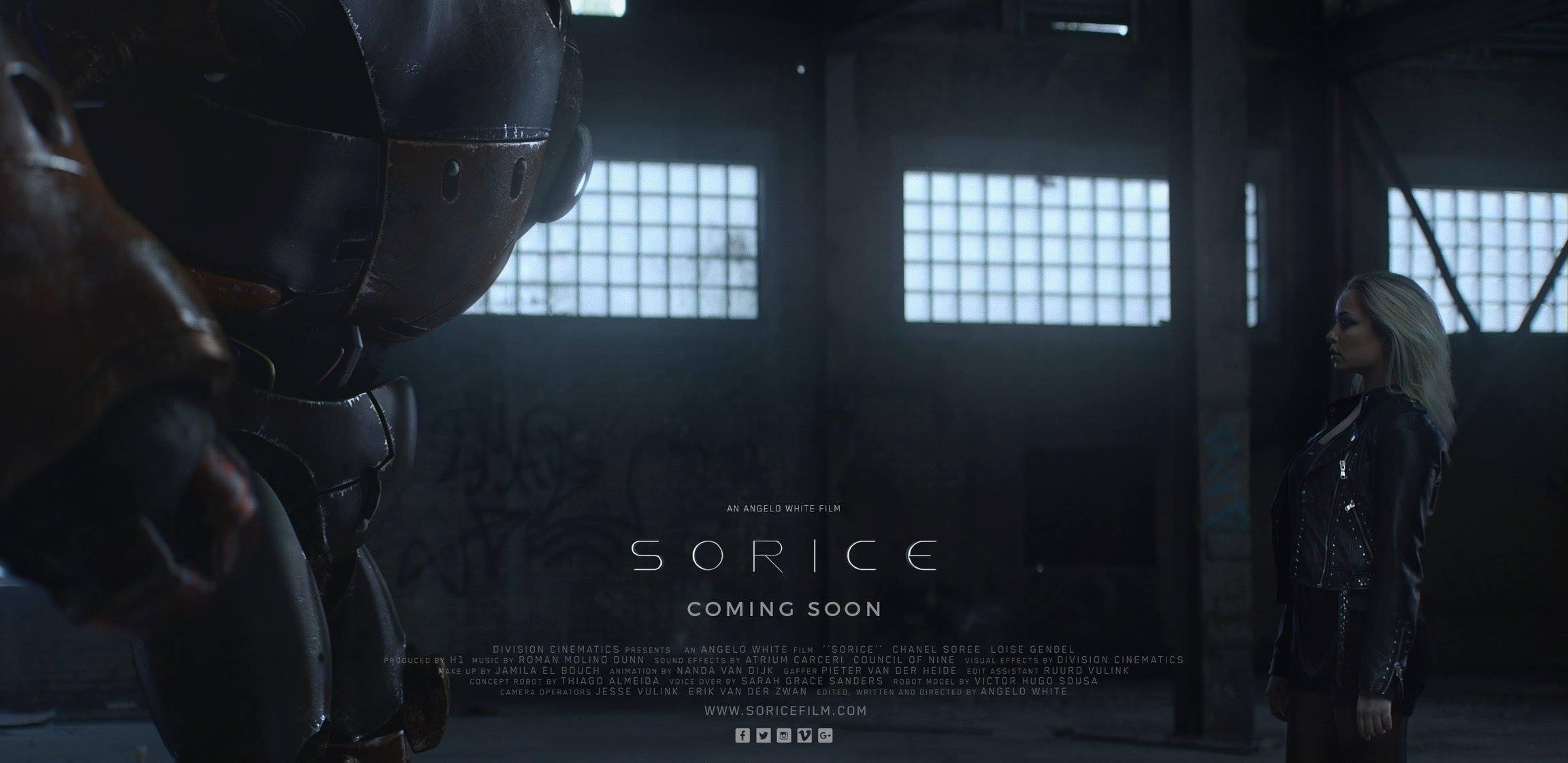 sorice-frame